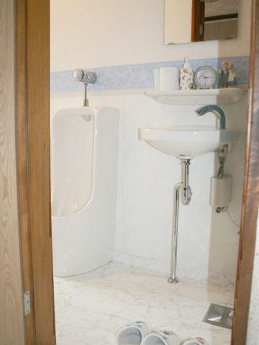toiletA2